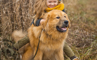 Things you can do to show your dog how much you love him/her!